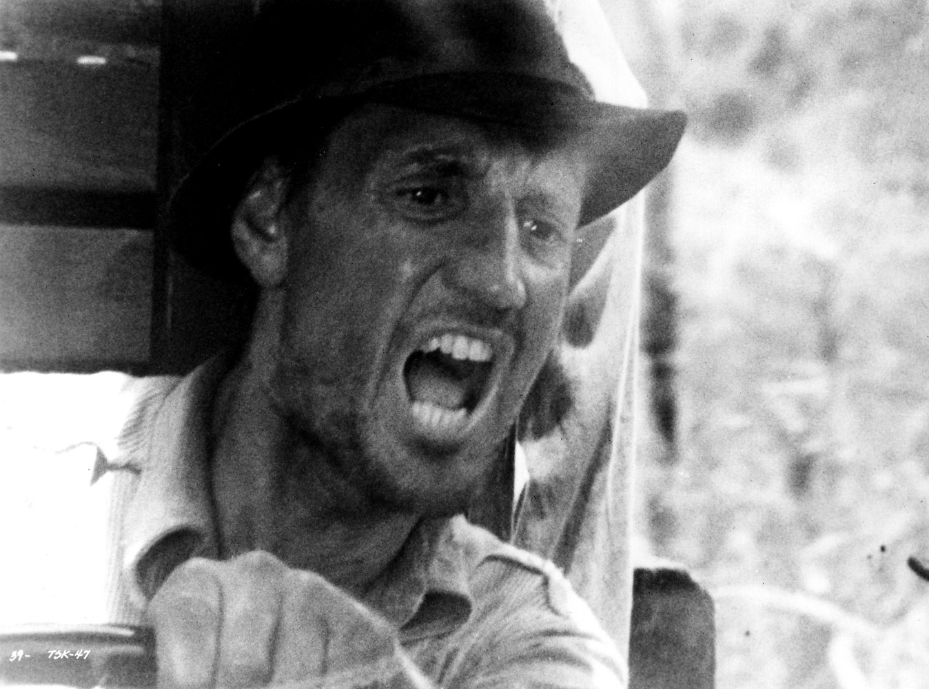 Roy Scheider Biography, Filmography and Facts. Full List ...